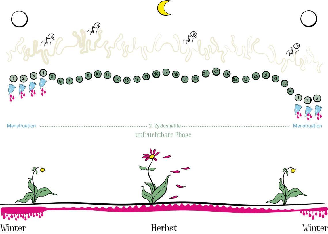 180508-ladyplanet-illustration-neu2018-hormonellbeeinflusster-zyklus180508-ladyplanet-illustration-neu2018-hormonellbeeinflusster-zyklus.jpg